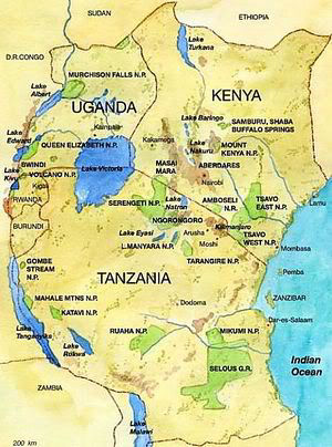 Organised crime nexus terrorism in Magnificent 5 East Africa